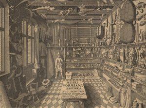 Kupferstich eines Kuriositätenkabinetts